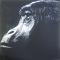 Gorilla im Nebel - 0,20 x 0,20 m - Acryl auf Leinwand