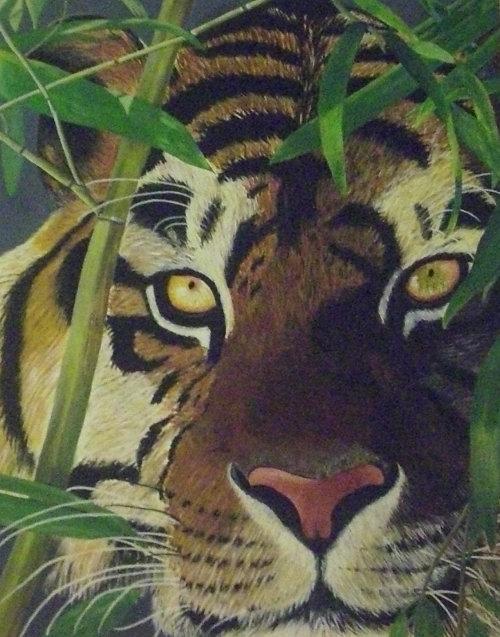 Tiger - 0,80 x 1,00 m - Acryl auf Leinwand